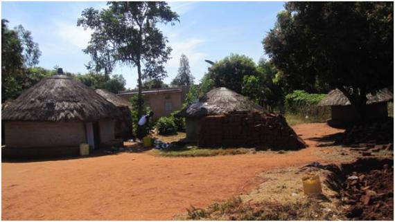 local homes in gulu, uganda