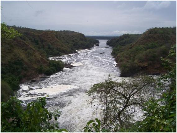 nile river above Murchison falls